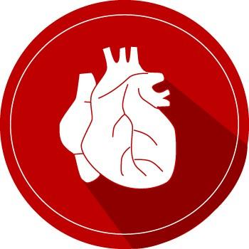 Herz-Tee bei Bluthochdruck 7