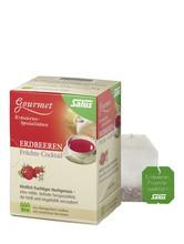 Salus Erdbeeren Früchtecocktail Tee