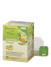Salus Ingwer Zitronen Tee